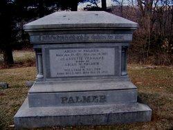 Abiah W Palmer