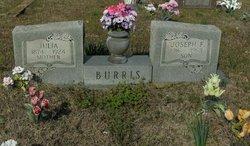 Julia <I>Cooper</I> Burris