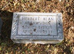 Herbert Alan Abramsohn
