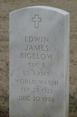 Edwin James Bigelow