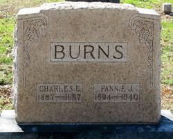 Fannie J <I>Bishop</I> Burns