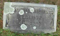 David Muckleroy Burrows
