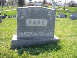 "Sarah E. ""Susanna"" <I>Dougherty</I> Kane"