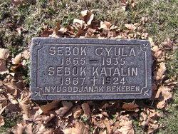 Katalin Sebok