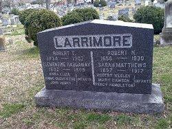 Robert Nicholas Larrimore