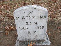 Sr Mary Agnesina