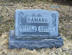 Albert W Hamann