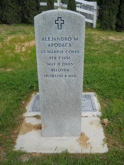 Alejandro M Apodaca