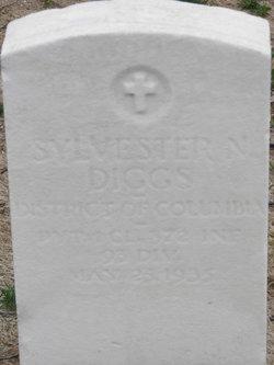 Salvester W Diggs