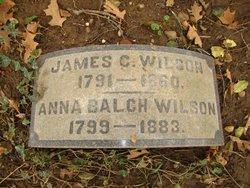 Anna Eleanora <I>Balch</I> Wilson