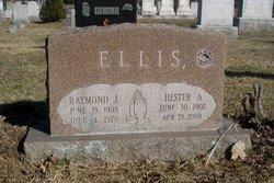 Hester A Ellis
