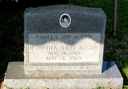 Pamela Joy Austin