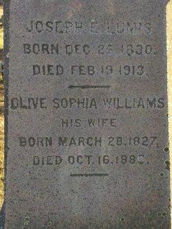 Olive Sophia <I>Williams</I> Lumis