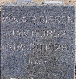 Mrs A B Gibson
