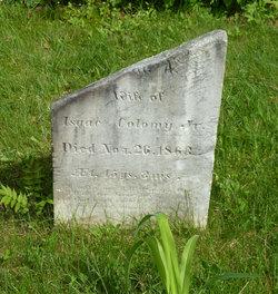 Susan A. <I>Dodge</I> Colomy