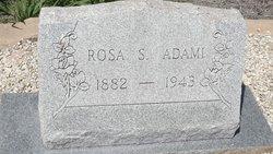 Rosa <I>Spill</I> Adami