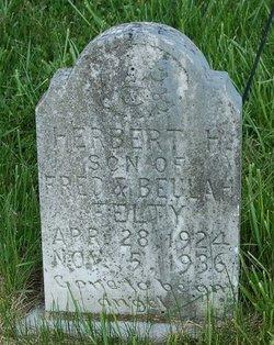 Herbert H Felty