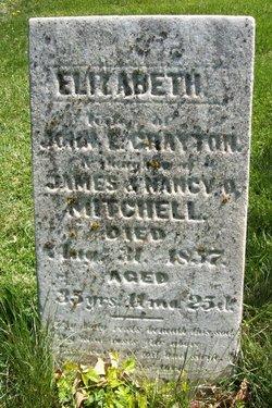 Elizabeth <I>Mitchell</I> Crayton