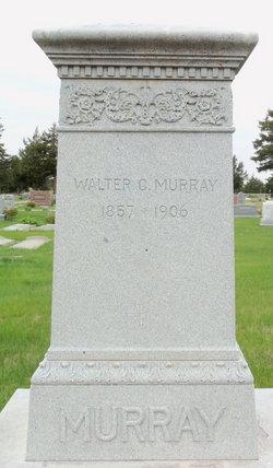 Walter C Murray