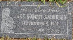 Jake Robert Andersen