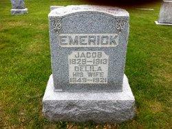 Jacob Emerick