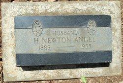Henry Newton Angel