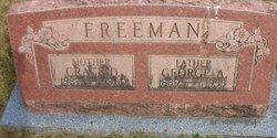 George Amel Freeman