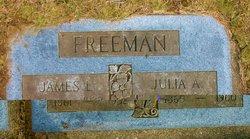 Julia Anne <I>Gilshenen</I> Freeman