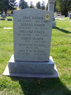 Jane <I>Thornley</I> Hamer