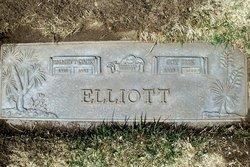 Iris Joy <I>Camp</I> Elliott