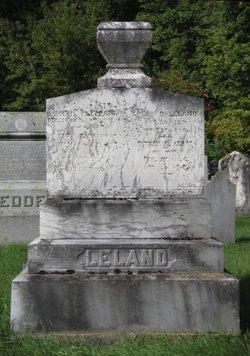 Solon P. Leland
