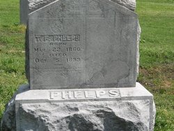 T F Phelps