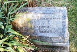 John E DeViney