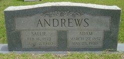 Adam Andrews