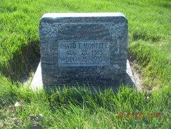 David Thomas Monteer