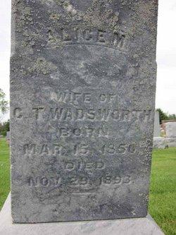 Alice M. <I>Dana</I> Wadsworth