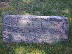 Andrew J. Neil