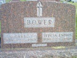 Carl Bower