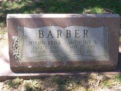 Joann <I>Brice</I> Barber