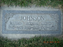 Joseph Wilford Johnson
