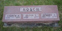 Andrew Hosch