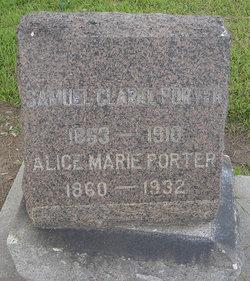 Alice Marie <I>Wagner</I> Porter