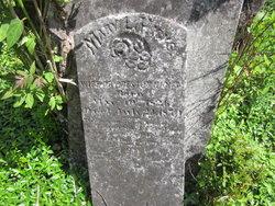 Mary Louisa <I>Haydon</I> Hicks