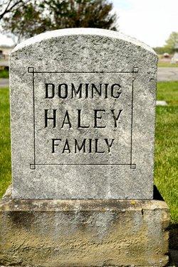 Dominick Healy