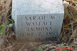 Sarah Malissa <I>Wallace</I> Ammons