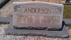 Caroline A. <I>Allen</I> Anderson