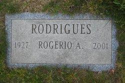 Rogerio Andrade Rodrigues