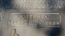 Joseph A Dinelt