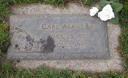 Carl Alan Bay