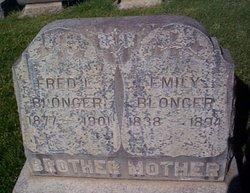 Fred L. Blonger